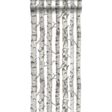 carta da parati tronchi di betulla grigio caldo chiaro da ESTA home