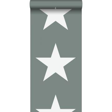 carta da parati stelle verde grigiastro da ESTA home