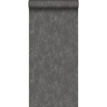 carta da parati liscia con effetto pittorica grigio scuro da ESTA home