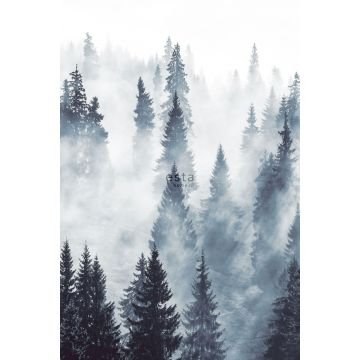 fotomurale foresta nebbiosa verde da ESTA home