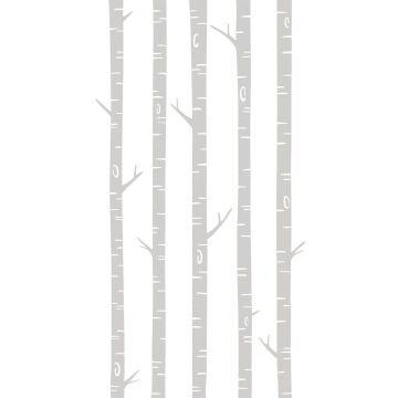 fotomurale tronchi di betulla grigio da ESTA home