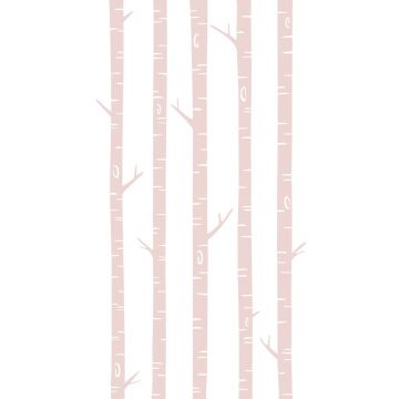 fotomurale tronchi di betulla rosa tenue da ESTA home