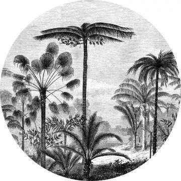 fotomurale autoadhesivo tondo paesaggio con palme bianco e nero da ESTA home