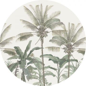 fotomurale autoadhesivo tondo palme beige chiaro e verde grigiastro da ESTA home