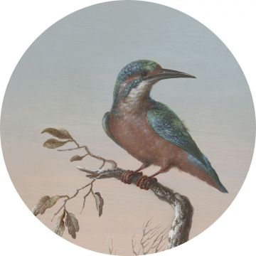 fotomurale autoadhesivo tondo uccello sul ramo rosso di sera da ESTA home