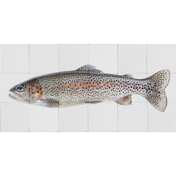 adesivo da parete pesce grigio caldo e rosa salmone da ESTA home