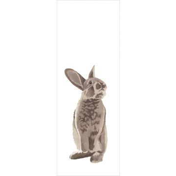 fotomurale coniglio marrone da ESTA home