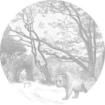 fotomurale autoadhesivo tondo foresta con animali della foresta grigio da ESTA home