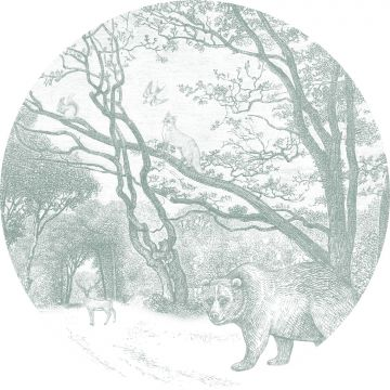 fotomurale autoadhesivo tondo foresta con animali della foresta verde da ESTA home